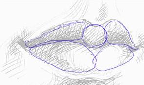 нарисовать губы карандашом